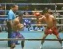 おもしろキックボクシング