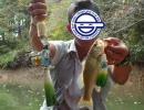 【ニコニコ動画】【ミク】ネギもってブラックバス釣りにいってみたpart2【フィッシング】を解析してみた