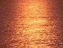 ◆岬大介劇場 第09話「深海からの挑戦状」