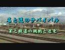 プロジェクトW-名と迷のサバイバル(後)【迷列車列伝1周年記念】