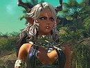これが次世代MMORPGの実力か。「TERA The Exiled Realm of Arborea」の最新ムービーを日本語字幕つきでUp