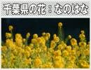 女記者2人が続・絶叫取材【零~zero】創刊号