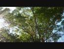 【ニコニコ動画】【オリジナル曲】新緑の轟きを解析してみた