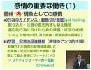 【ニコニコ動画】遠藤利彦「感情の心理学」 2/2を解析してみた