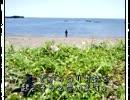 【ニコニコ動画】聖人ぶって海割りに挑戦してみたを解析してみた