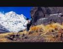 【ニコニコ動画】水道管を背負って(嫁が)ヒマラヤに登ってきたを解析してみた