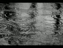 rain stops,good-byeを歌ってみた【UMA(うま)】