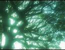 【ニコニコ動画】白き夢の境界線 【オリジナル曲】を解析してみた