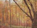 【東方自作アレンジ】秋色の山~autumn scenery / 妖怪の山 ~ Mysterious Mountain