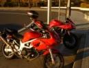 【ニコニコ動画】惚れたバイクでお出かけしてみた!part.11を解析してみた