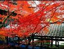 【東方自作アレンジ】秋めく滝