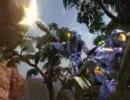 HALO3β マルチプレイヤービデオドキュメンタリー