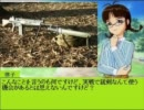 【スピナーPx61式P】THE IDOL TANK M@STER 08 特別編