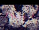 ハルニキミト 歌ってみた【まじ娘】 thumbnail