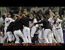 【ヨーロッパ】ヨーロッパ野球入門01~オランダ編~【野球】