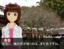 春香さんと国盗り・2010冬(山陽・南海・西海道) 第11話A