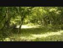 【ニコニコ動画】【ニコニコインディーズ】初夏を解析してみた