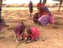【ニコニコ動画】マサイ族の村を訪ねてみた。を解析してみた