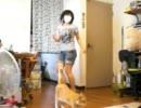 【ニコニコ動画】【柴犬】ハッピーシンセサイザとおちゃめ機能を倍速で【踊ってみた】を解析してみた