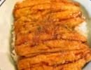 【ニコニコ動画】鰯のかば焼き丼と刺身♪を解析してみた