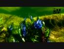 【ニコニコ動画】アマゾンの魚たち Part 3を解析してみた