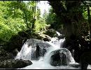 【ニコニコ動画】【福島】 美しい渓流と岩魚を解析してみた