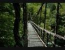 【ニコニコ動画】【オリジナル曲】森【よぴょん】を解析してみた