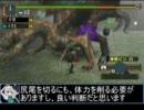 【東方】迷い込んでポッケ村 番外編11・狩猟前編【MH】