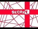 【巡音ルカ】secret (inst.)【証拠音源】 thumbnail