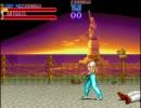 Final Fight  ROUND 5