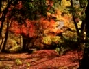 【ニコニコ動画】秋,piano,紅葉 [オリジナル曲]を解析してみた