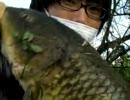 【ニコニコ動画】巨ゴイを釣る (゚ロ゚; ダイソーの竿と吸い込み仕掛けで挑んだが・・・を解析してみた