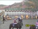 第39回南部駒賞  アスペクト