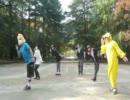 【黄色いのと普通の人が】ハートキャッチ☆パラダイス【踊ってみた♪】