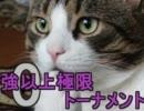 【MUGEN】大乱戦!!強以上極限0トーナメントPart35【強~神クラス】