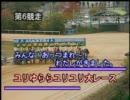 2011/12/02 荒尾競馬5R ユリゆららユリユリ大レース