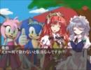 ソニックと幻想の世界Act.5:華麗に見参!?桃色台風娘(後編)