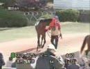2011年12月13日 園田競馬4R スマイルムービー出走(4戦目)