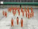フィリピン刑務所の囚人達による「ハレ晴レユカイ」