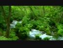 【ニコニコ動画】渓流の水景【フルHD】を解析してみた