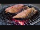【ニコニコ動画】淡々と七輪で鮭を焼く動画を解析してみた