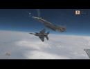 AFL-003 第83航空隊 第204飛行隊 「日本の南西空域を守る活動と任務」 2/4