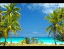 【ニコニコ動画】天国に一番近い島を解析してみた