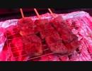 【ニコニコ動画】三十路のオレが愛馬と駆ける!! Part.2を解析してみた