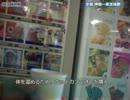 【ニコニコ動画】とんかつの自転車旅行記8 茨城1を解析してみた