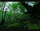 【ニコニコ動画】森×アシタカせっ記を解析してみた