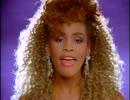 Whitney Houston / I Wanna Dance With Somebody【拡大画面仕様】