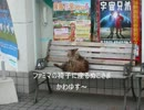 【ニコニコ動画】ぼくのはるやすみ(淡路島自転車で1周篇)1日目を解析してみた