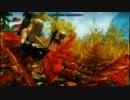 [SKYRIM]ゆっくりスケルトンpart4 [ゆっくり実況] thumbnail