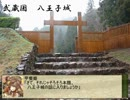 【正三位A】甲斐姫の城攻め紀行 第4回「八王子城」【戦国大戦ver1.20C】 thumbnail